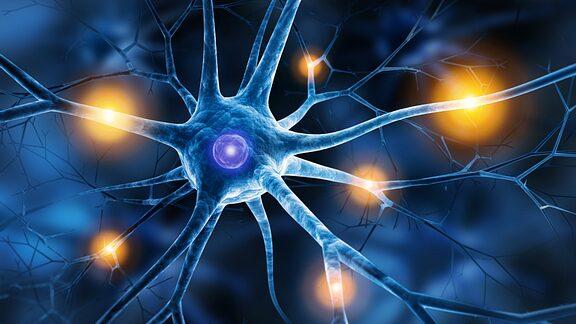 درمان اختلال روانتنی توسط دکتر سیامک مرادی فوق تخصص درد در کلینیک درد راد تهران