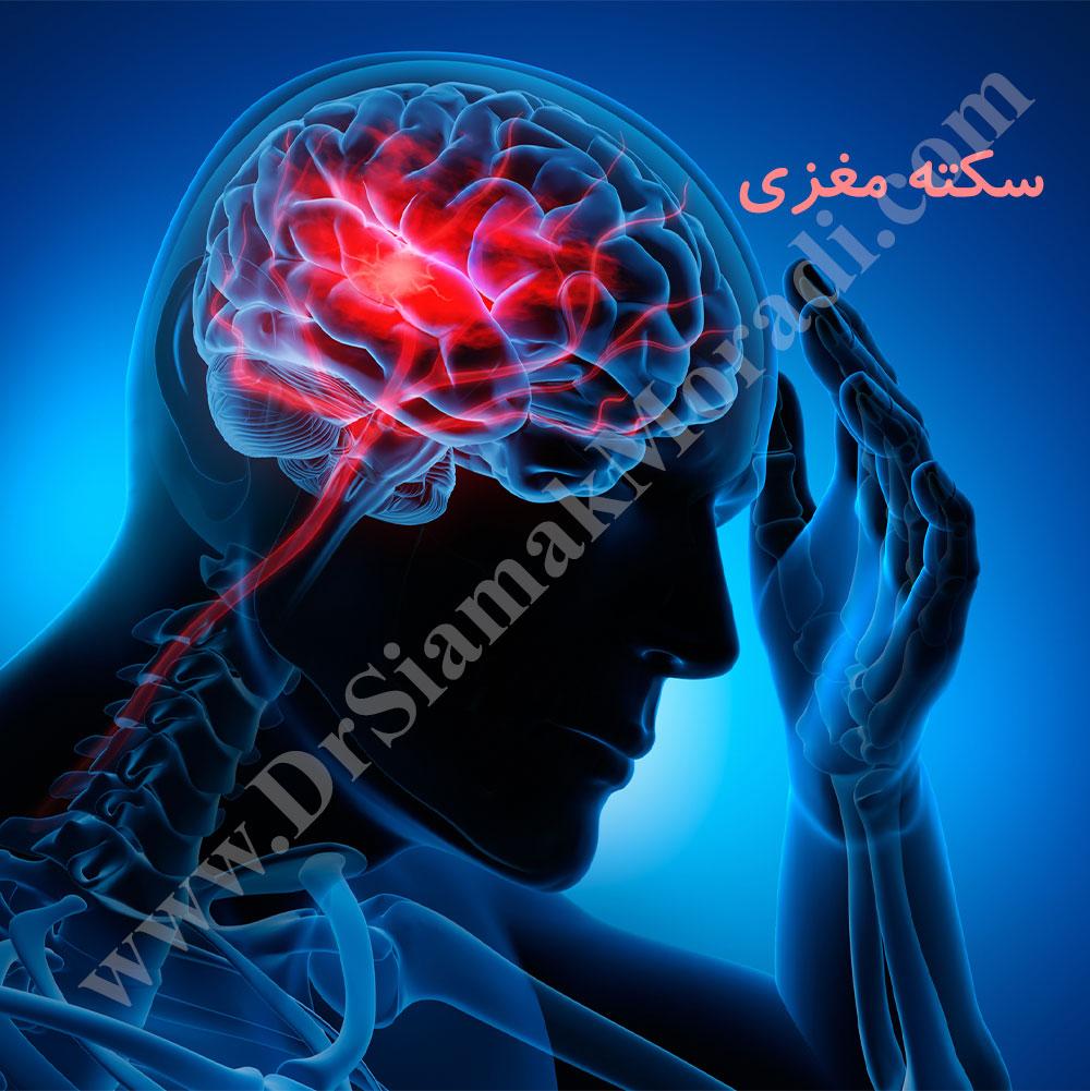 -مغزی.jpg