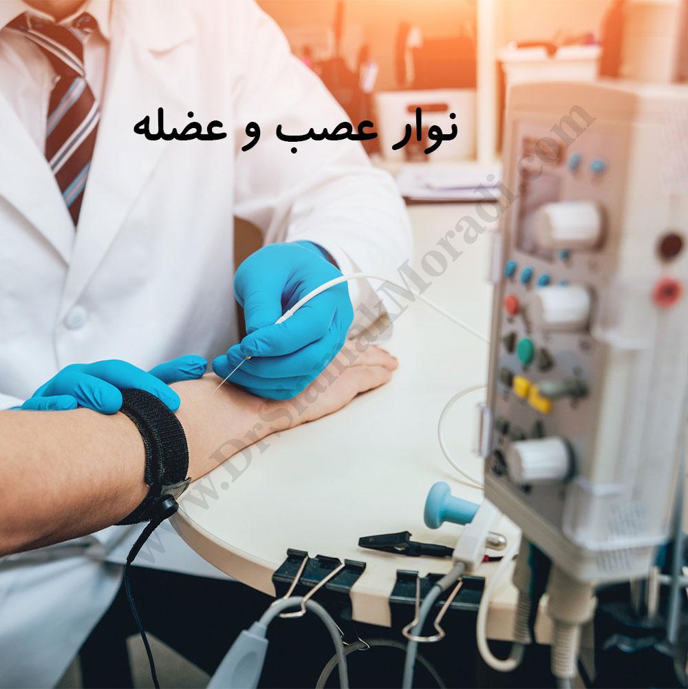-عصب-و-عضله-1.jpg